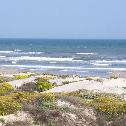 Mustang Island Beach in Texas